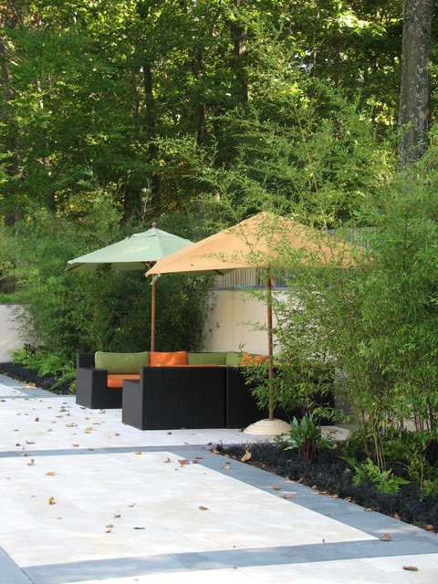 Flat water residence modern patio dc metro by for Plusen landscape architects