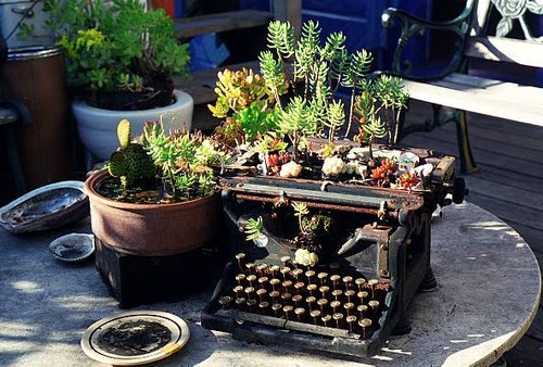 Flickr : green typewriter eclectic patio