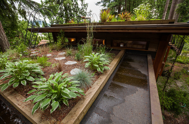Green Roof contemporary-patio