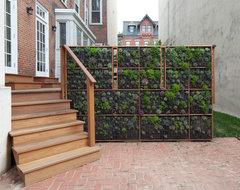 Green Street contemporary-patio