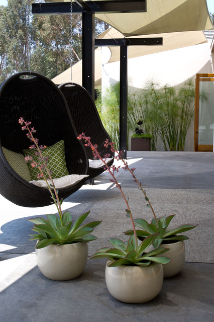 Grounded - Modern Landscape Architecture midcentury-patio