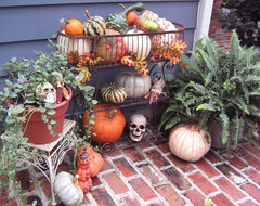Halloween Decorating with late summer plants & holiday pumkins and gourds eclectic-patio