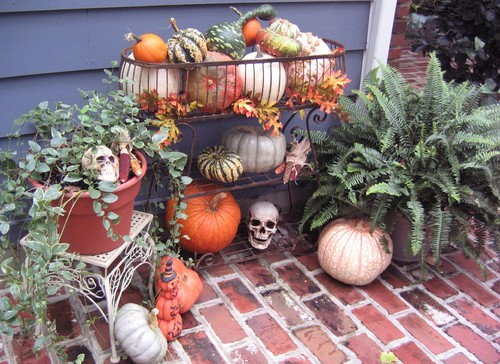 Halloween Decorating with late summer plants & holiday pumkins and gourds