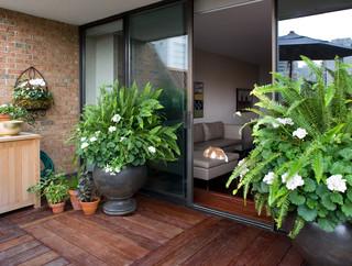 Con la primavera ya entre nosotros mujer salud y for Plantas de balcon para todo el ano