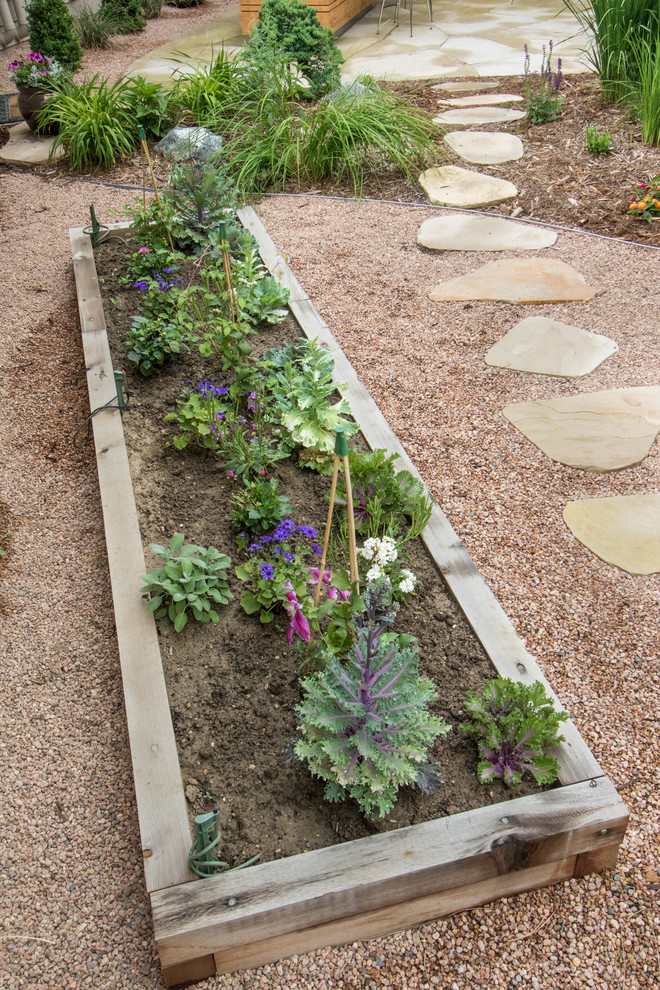Patio vegetable garden - mid-sized transitional backyard gravel patio vegetable garden idea in Denver