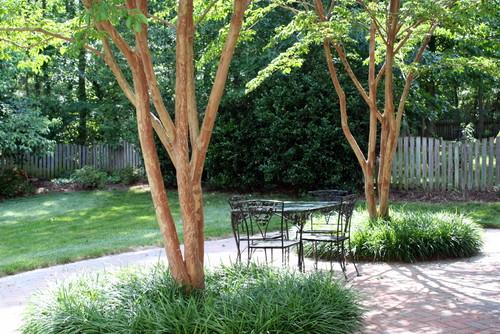 What Kind Of Grass Will Grow Under Oak Trees : Herringbone brick paver patterned patio http ightboldbeautiful