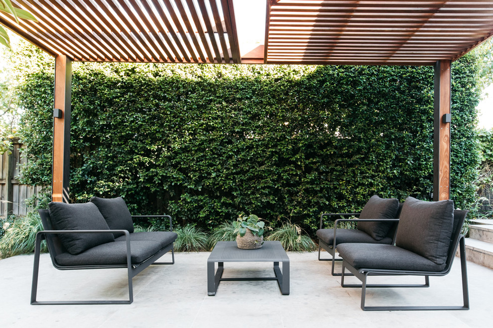 Example of a large trendy backyard patio design in Sydney with a pergola