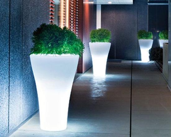 Illuminated Indoor-Outdoor Planters - Illuminated indoor and outdoor planter.