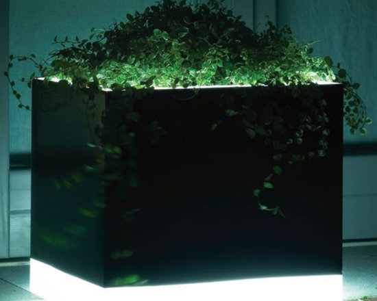 Illuminated Outdoor Planter in Black and White - Illuminated outdoor planter in black and white.