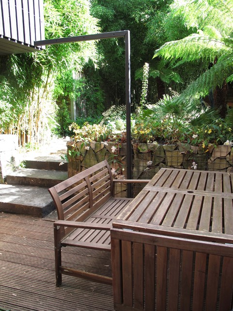 Jungle Backyard Ideas : Jungle Garden  Tropical  Patio  london  by Fenton Roberts Garden
