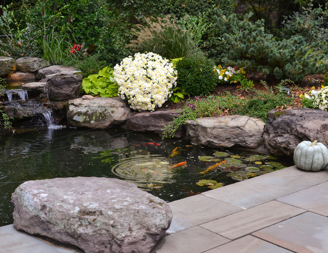 Koi pond and patio contemporary patio dc metro by for Balcony koi pond