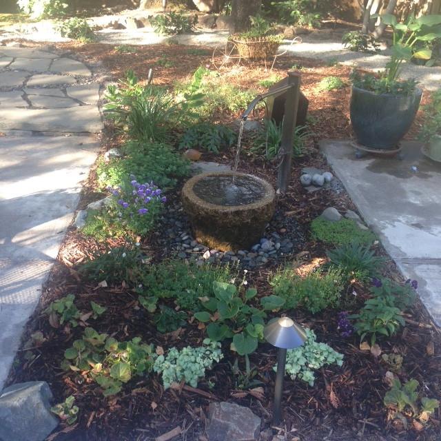 Xeriscape Landscaping Sacramento : Large xeriscape chico ca mediterranean patio sacramento by
