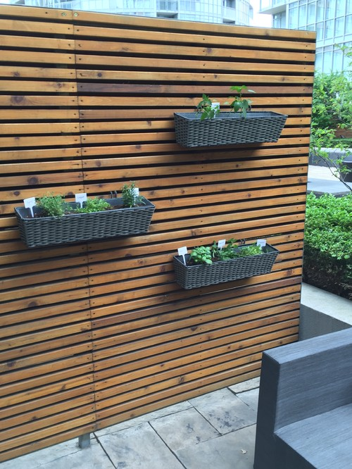 timber slat wall with herb garden on patio wall