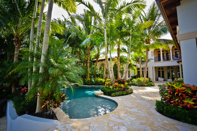 Lush Tropical Pool And Landscape Tropical Patio