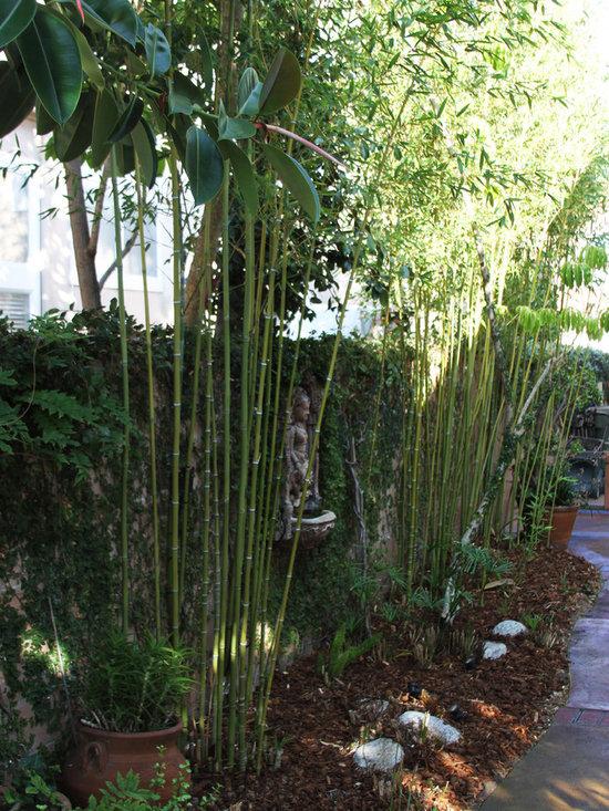 14,329 zen garden Patio Design Photos