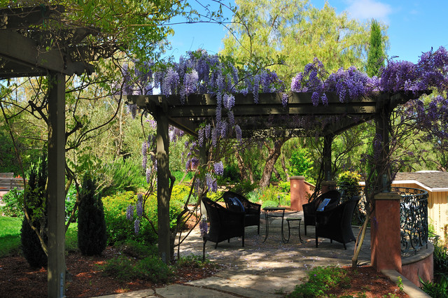 mediterranean patio and wisteria pergola mediterranean. Black Bedroom Furniture Sets. Home Design Ideas