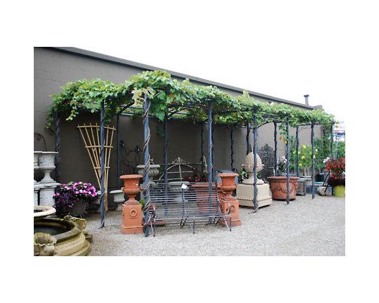 Branch Steel Grape Pergola -