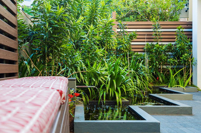 New farm contemporary courtyard brisbane by steven for Courtyard landscaping brisbane