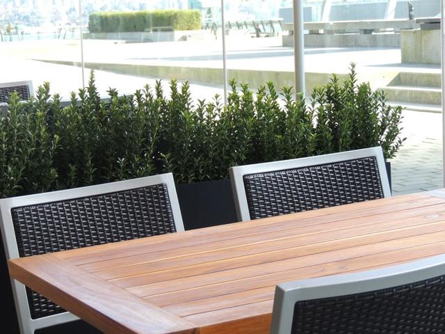 New Restaurant Project modern-patio