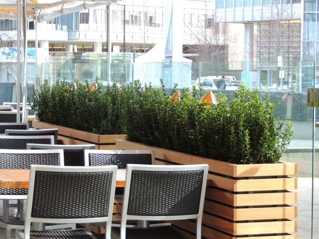 Restaurant patio design  New Restaurant Project - Modern - Patio - Vancouver - by Object ...