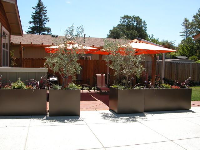 Novato contemporary garden contemporary-patio