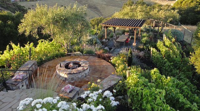 Outdoor Living Set In A Vineyard With A Pergola Fire Pit