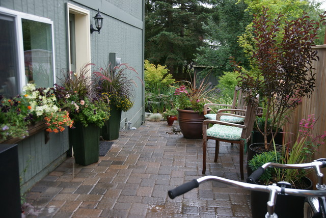 plant arrangements eclectic patio portland by