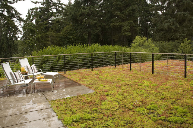 Ellis Residence - green roof contemporary patio