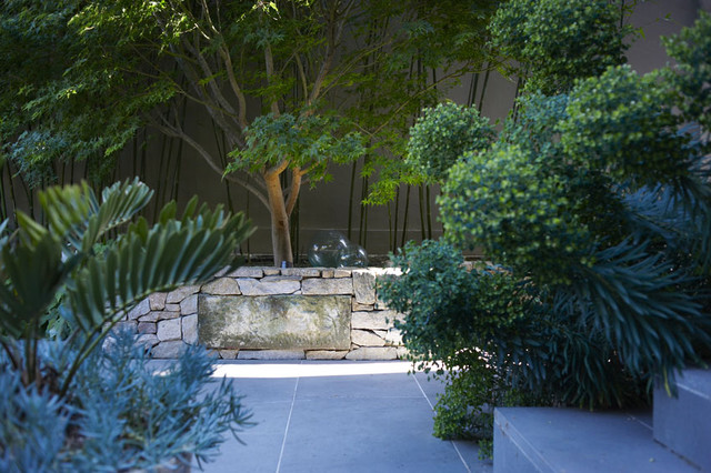 Potts Point Courtyard Moderno Patio Sydney Di