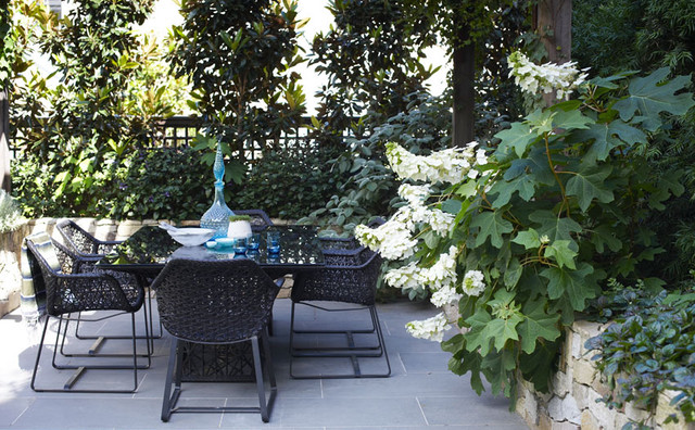 potts point courtyard modern patio sydney by