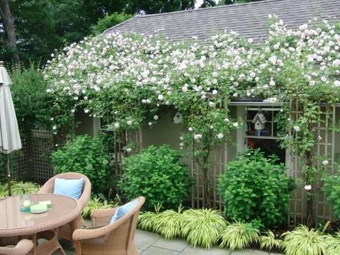 Romantic tarrytown terrace traditional patio for Westover landscape design