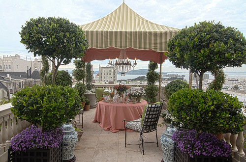 Roof Terrace by Frank Holbrook Design traditional patio