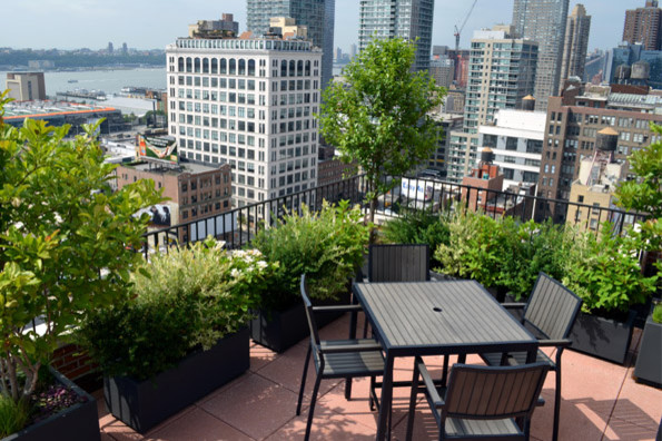 Rooftop Coop Garden Contemporary Patio New York By