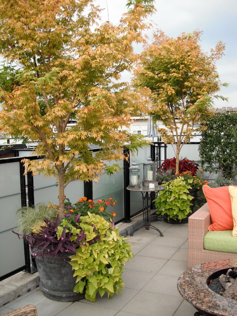 Amazing Rooftop Terrace Contemporary Patio