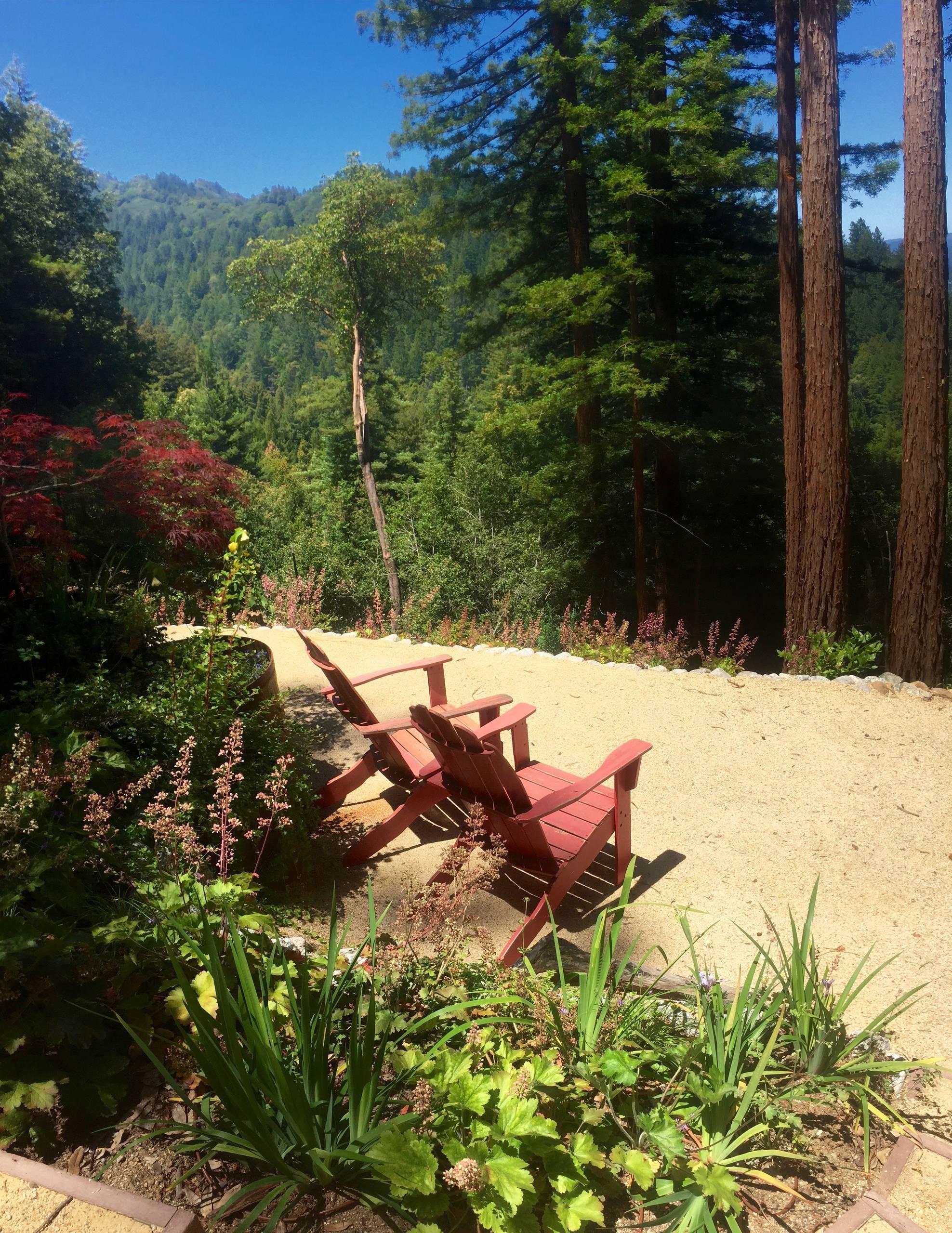 Santa Cruz Mountain View