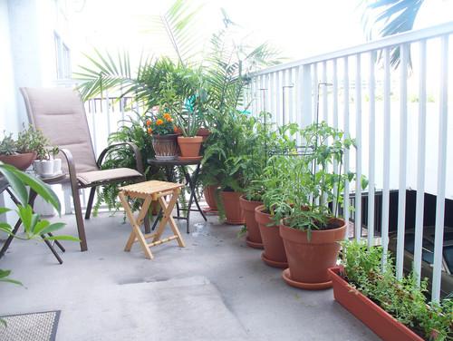 Small Gardens  landscape