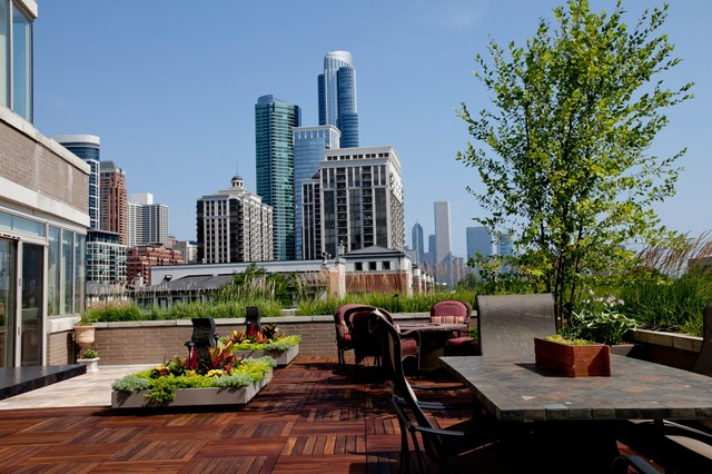 South Loop Lakefront project Traditional Patio