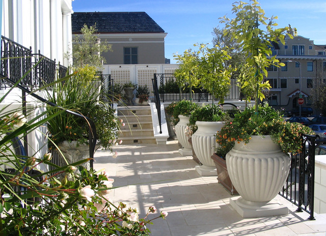 Terrace traditional-patio