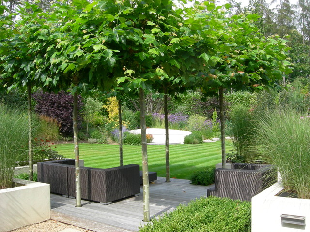 The Howard Garden - Contemporary - Patio - South East - By Landscape Design By James Brunton ...