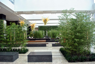 The Winter Garden - Contemporary - Patio - calgary - by Greenery Office Interiors Ltd