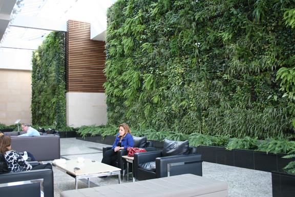 The Winter Garden - Modern - Patio - Calgary - By Greenery Office Interiors Ltd