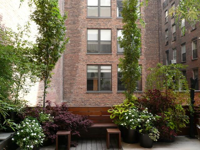 Tribeca terrace garden new york ny contemporary patio for Terrace trees