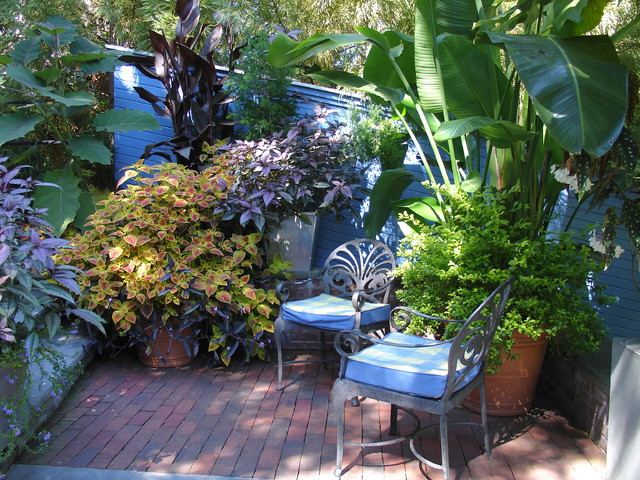 Wonderful Tropical Garden Design Tropical Patio