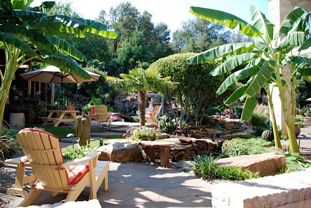 Tropical garden oasis Tropical Patio Dallas by Original