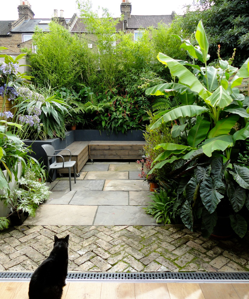 Inspiration for a tropical patio container garden remodel in London