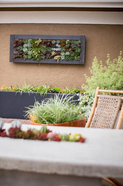 Vertical Gardening Modern Patio San Diego By