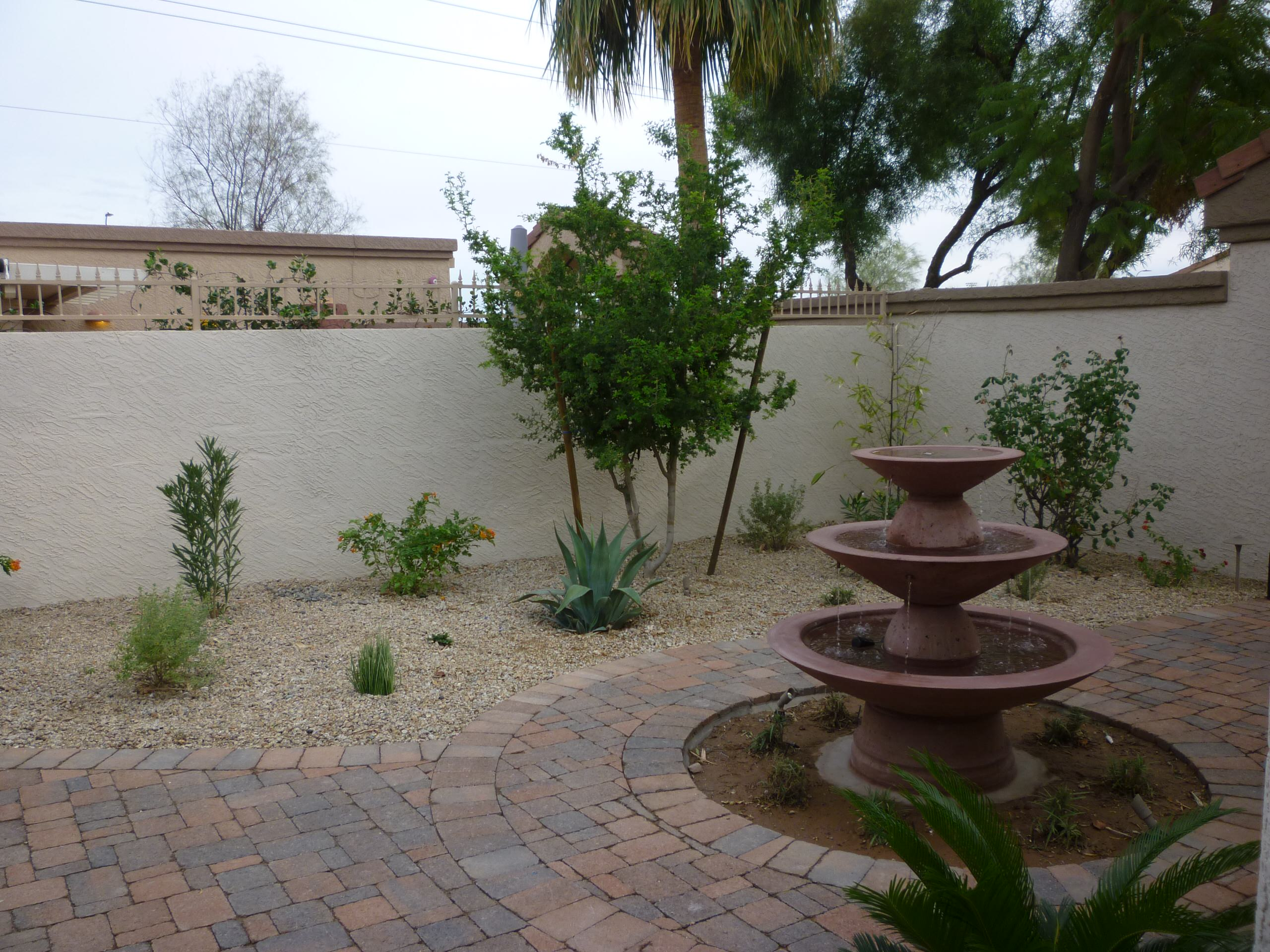 Water Feature & Plantings
