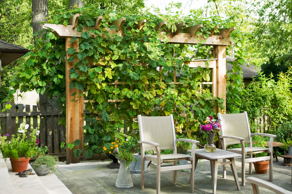 Inspiration for a timeless backyard stone patio vertical garden remodel in Chicago