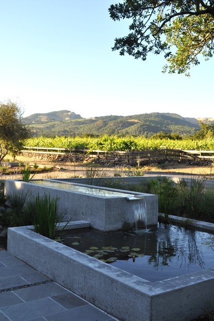 Wine country patio and water feature modern patio