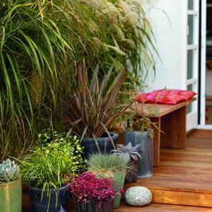 Wood Patio/Garden - Door 13 Architects mediterranean-patio